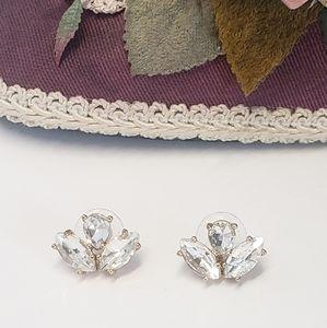 Jewelry - Gorgeous Multi Glass Crystal Earrings